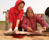 Learning to cut fish