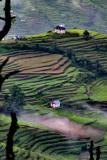 NEPAL-0026