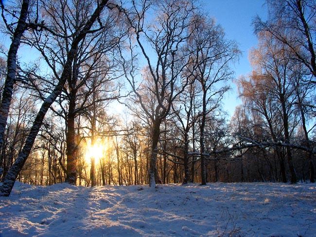Cold but lovely blue sky