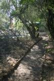 Mashatu - The path from the tent towards the common areas