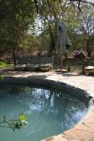 Mashatu - The pool