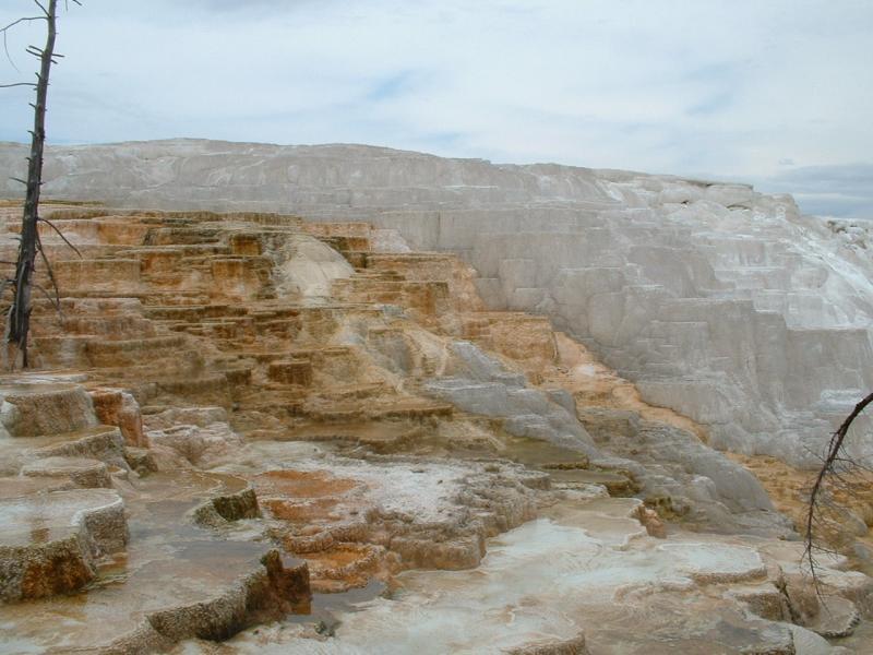 Mammoth Springs (1)