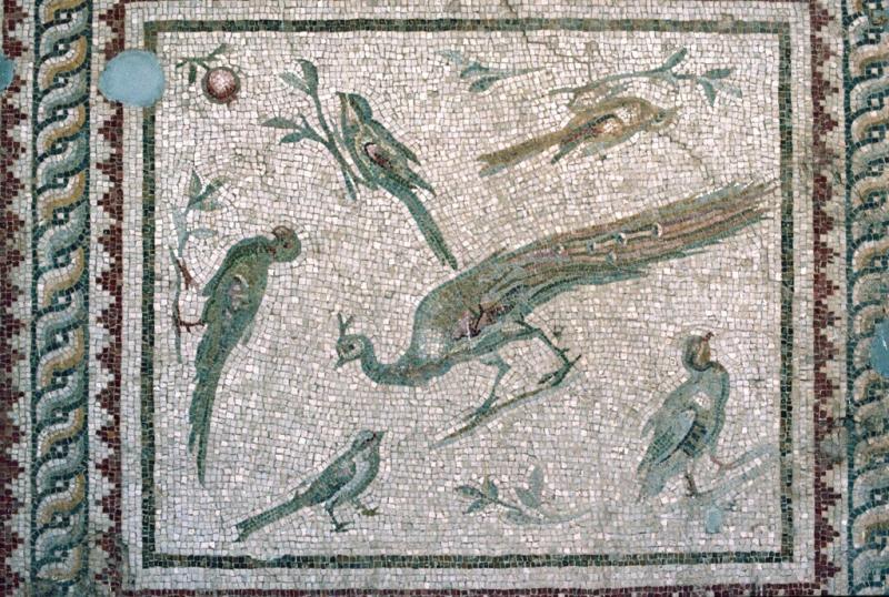 Antakya mosaic 21a