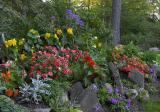 Beau's garden