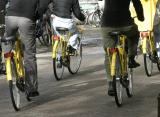 The Yellow Bike Brigade