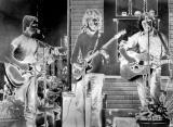 Solarized Rock Band