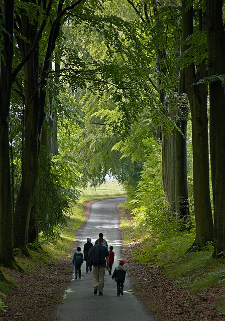 De wandeling