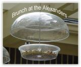 Brunch at the Alexanders