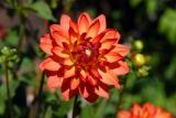 Filoli Garden: Bay Area California