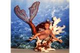 Mermaids Miniature   click on thumbnail to enter gallery
