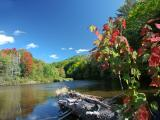 mad-river-pond-8188.jpg