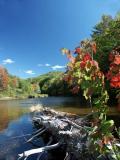 md-river-pond-8189.jpg