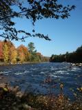 pemigewasset-river-8558.jpg