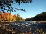 pemigewasset-river-8559.jpg