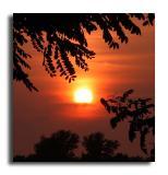 August Setting Sun 2