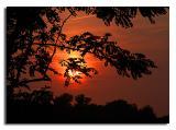 August Setting Sun 3