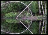 3rd:  The Dark Pond by MarkusU