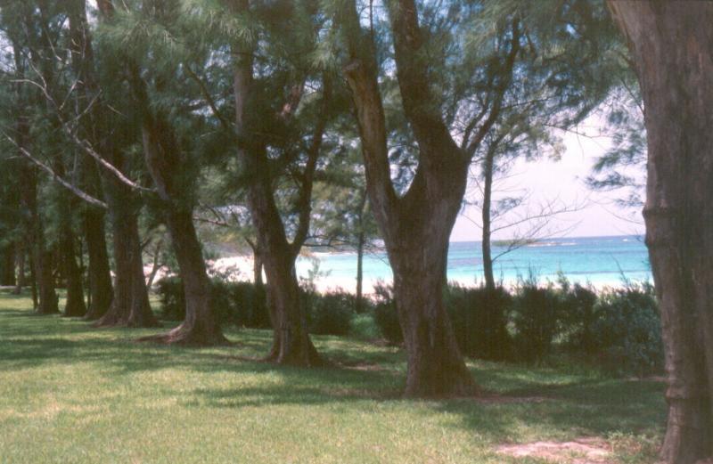 Bahamas027.jpg
