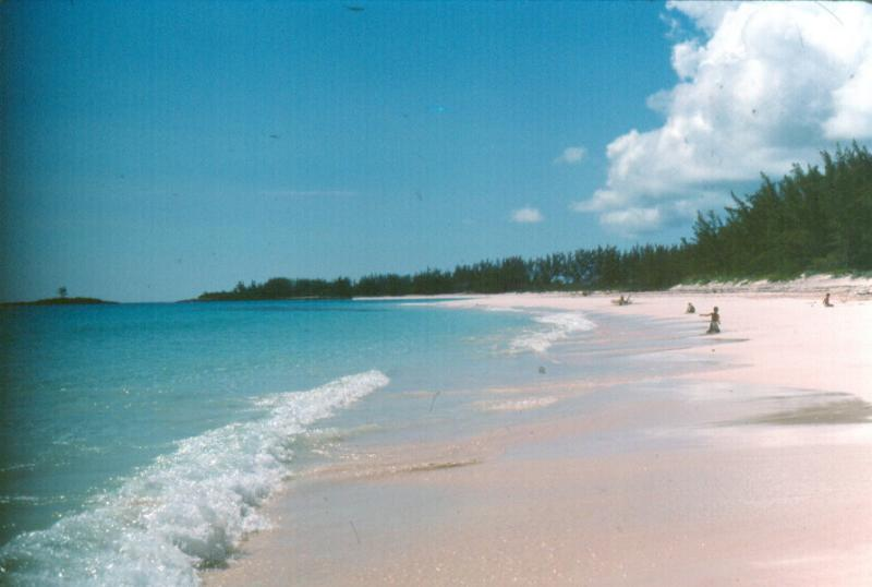 Bahamas067.jpg