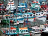 Fishing Harbour - Dunmore East (Co. Waterford)