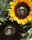 Sunny Old Folks