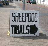 Sheep Dog Hill Trials and Highland Folk Museum