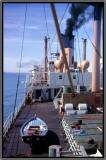 1966 SS Baron Ardrossan  in Suez Canal.jpg