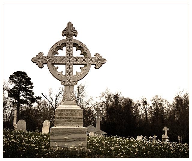 DSCF0004_celtic.jpg