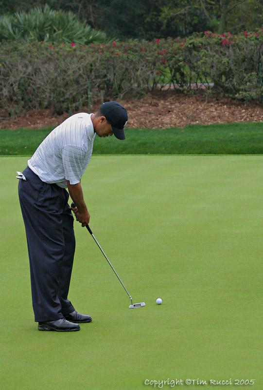 25478 = Tiger Woods