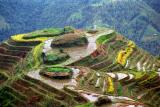 Longsheng rice terraces 1.jpg