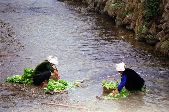 washing vegetables near Miao village in the ice cold river.jpg