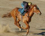 Birdsville early morning training