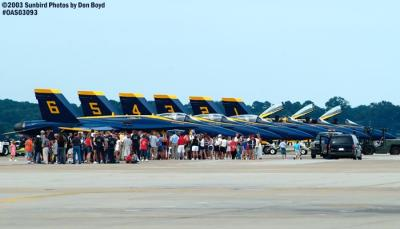 USN Blue Angels F/A-18 Hornets military aviation air show stock photo #6949