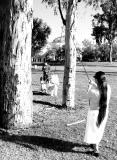 Pinata in the Park