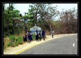 Nkhwazi Lodge