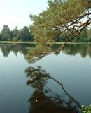 September 20: Henley Park Lake (2)