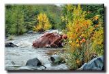 Rainy Day - Oak Creek