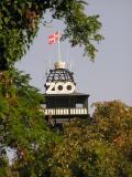 zoo tower