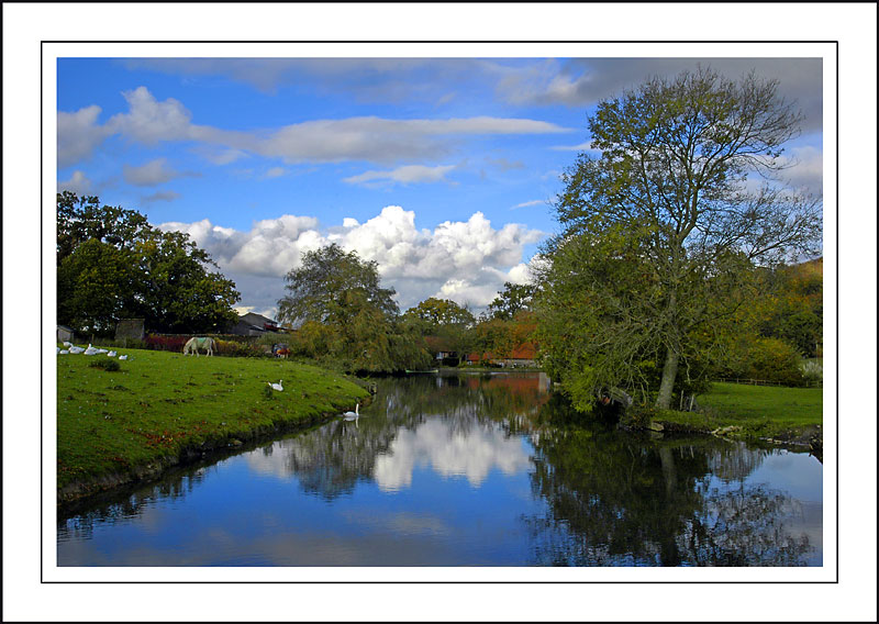 Longleat ~ pond at Horningsham