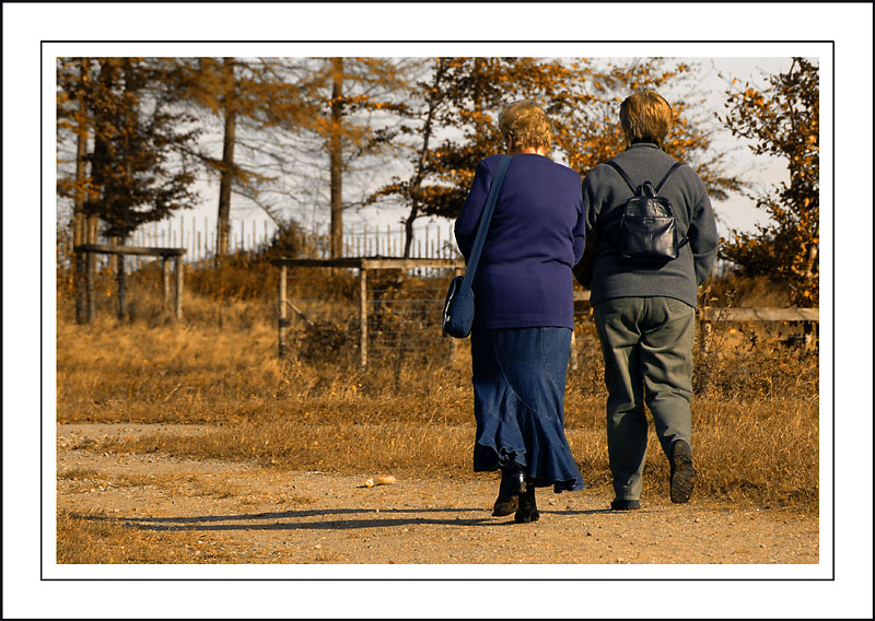 Longleat ~ the lonely walk of the photographers wives!!