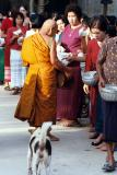 Alms giving to a monk on Buddha day; three bags of rice for good luck, Ban On Luai
