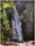 Waterfall near Rotorua