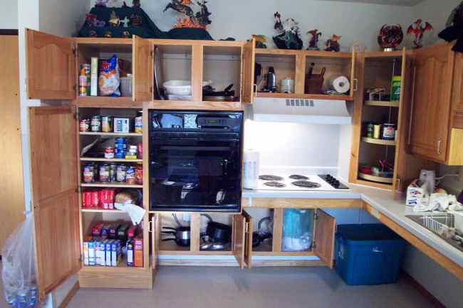 Jakes cupboards, after Terri shopped.
