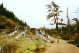 Dragon Back's Waterfall¡i¸Âr¬y½÷¡j