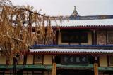 Rear Monastery¡i¶ÀÀs¦x¡j