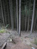 2003-09-06 12-43-57.JPG