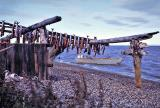 Salmon drying in the Arctic