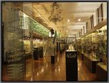 The Glass Gallery