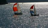 Yachts in nor-easterly with shoots up on Pittwater at Kur-ring-gai