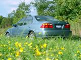 A Flowery Civicby Victor Bieger